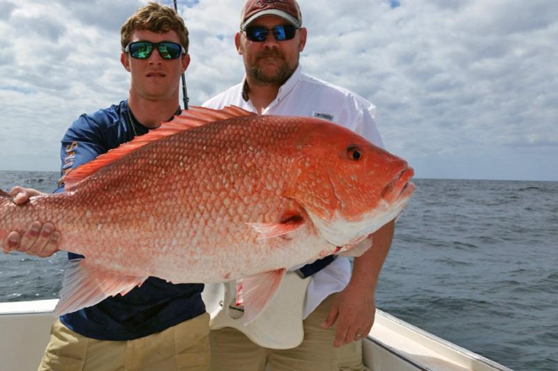 Yankee star photo gallery for Deep sea fishing orange beach
