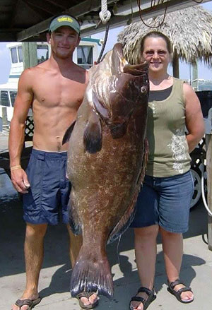 State Record Back Grouper