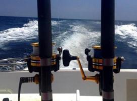 Deep sea fishing gulf shores deep sea fishing orange beach for Charter fishing gulf shores